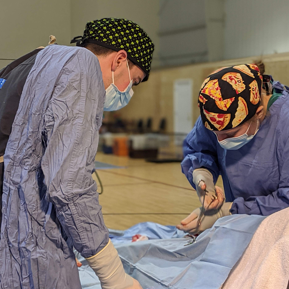 A veterinary student observing a surgery