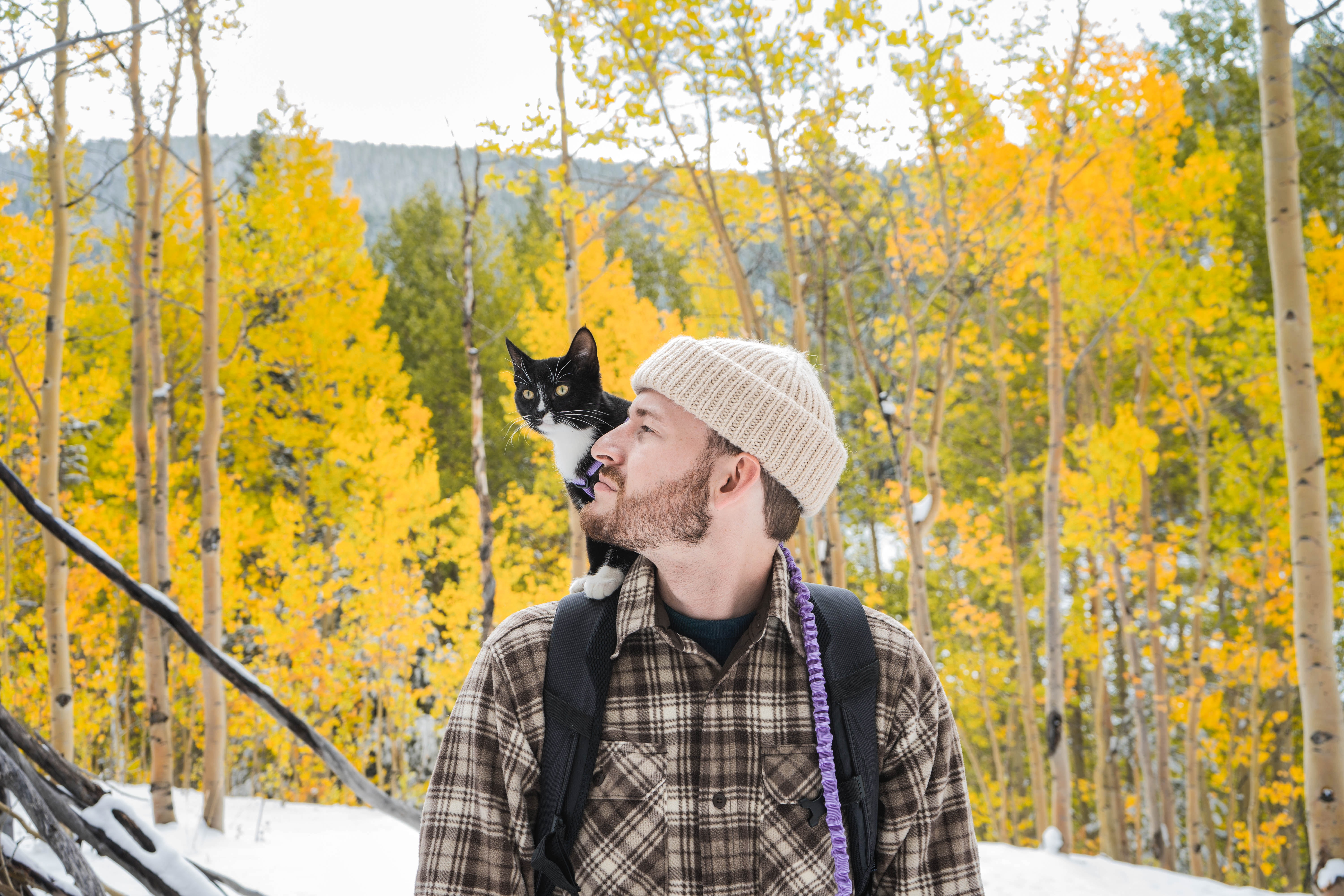 A man in a flannel shirt and a beanie looks at his black cat, who sits on his right shoulder. They are outside on a hike amongst a bunch of yellowing autumn trees.