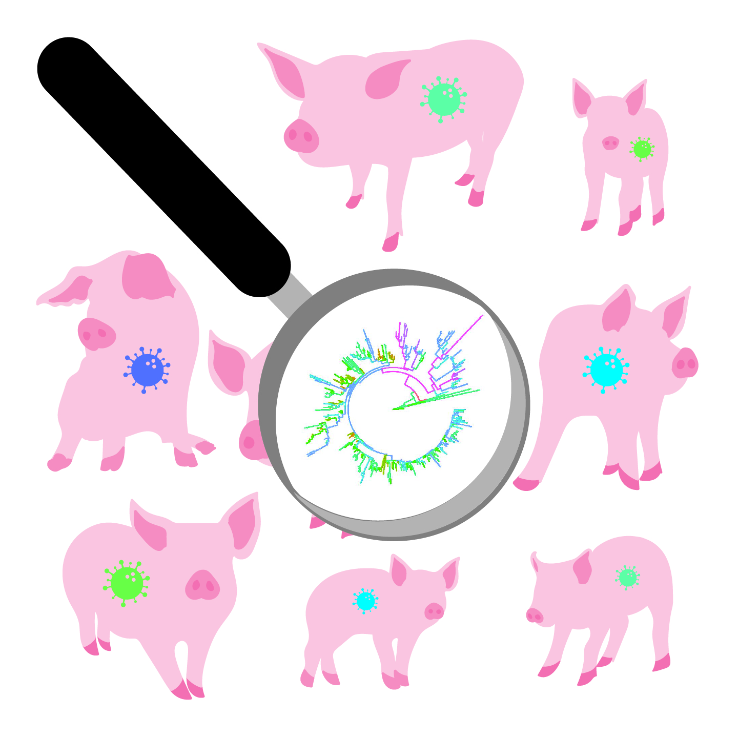 An illustration depicting a herd of pigs with the PRRS virus. A magnifying glass is over one of the pigs, revealing a genetic tree.
