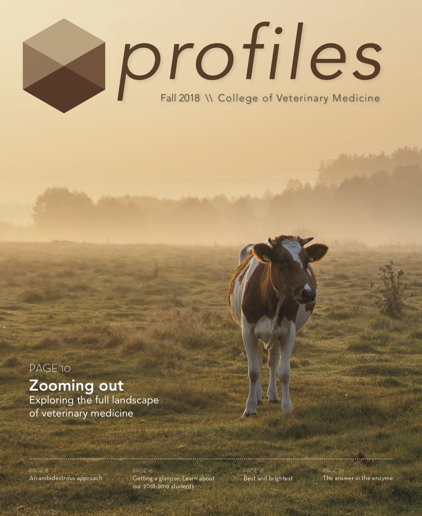 Profiles Fall 2018 cover image