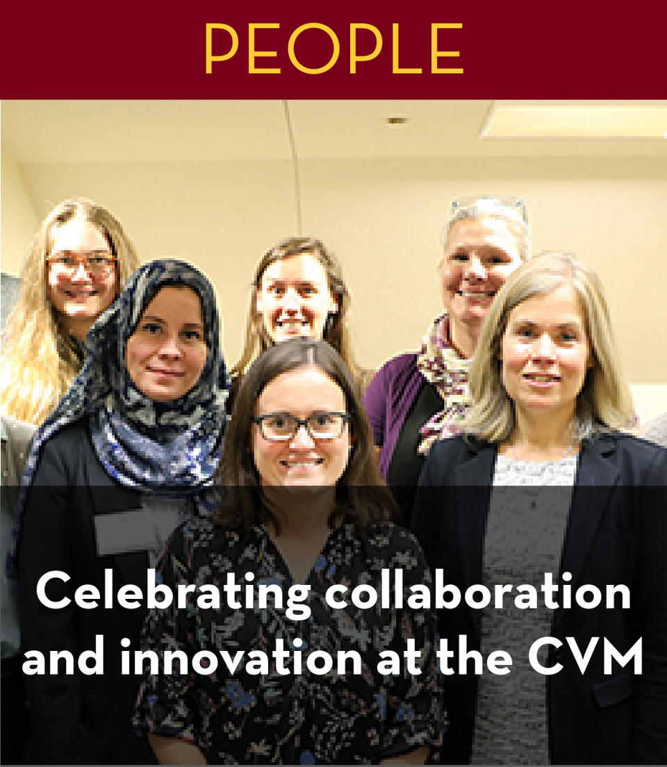 Celebrating collaboration and innovation at the cvm