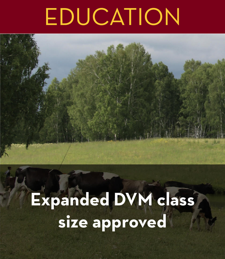 expanded_dvm_class_size_approved
