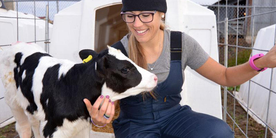 VMED graduate student with a calf