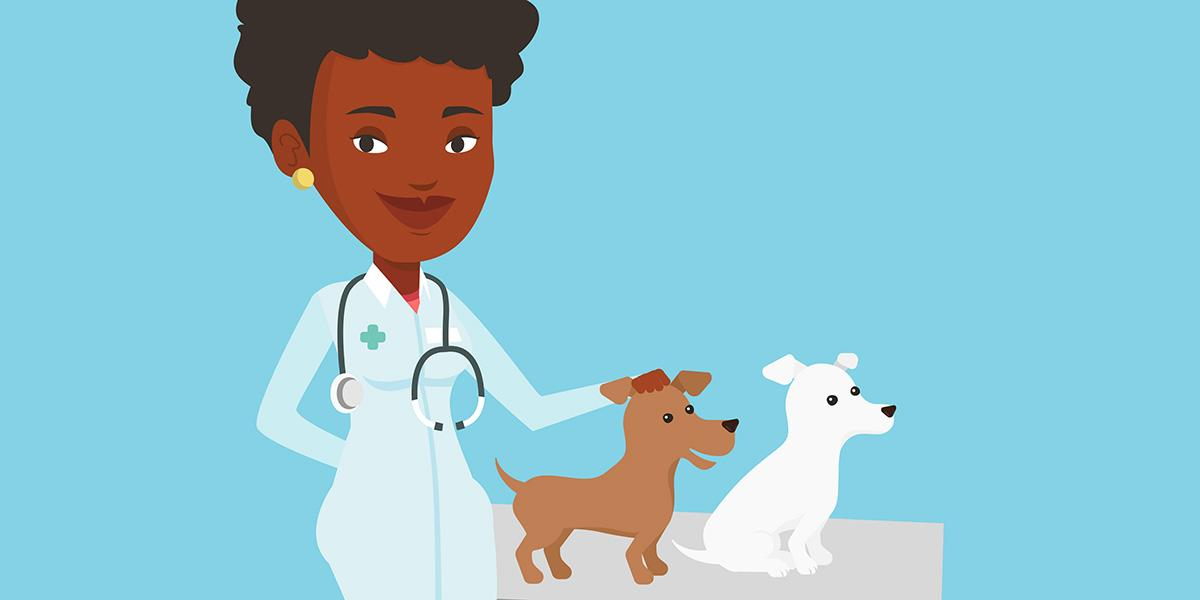 Illustration of a veterinarian with small animals